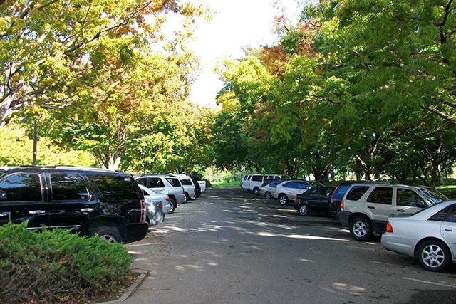 Tìm những nơi đỗ xe có bóng râm cây cối